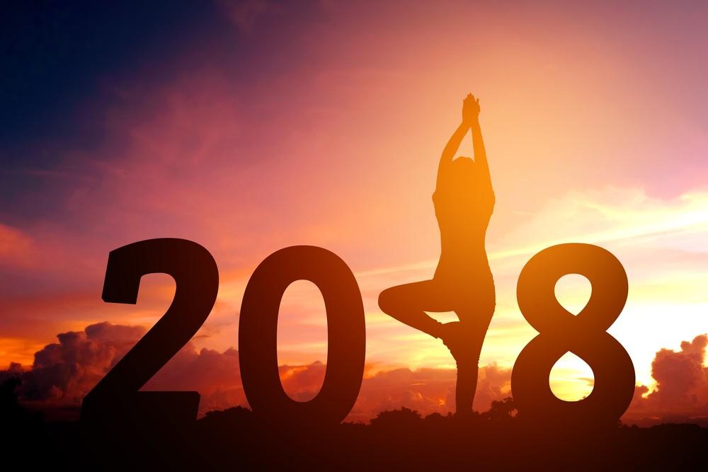 Ziele setzen 2018